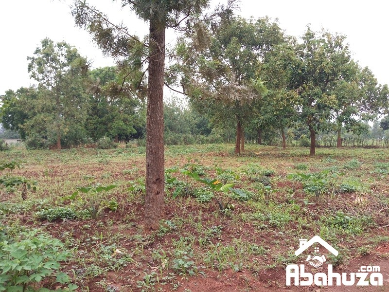 A RESIDENTIAL PLOT FOR SALE IN KIGALI AT MASAKA