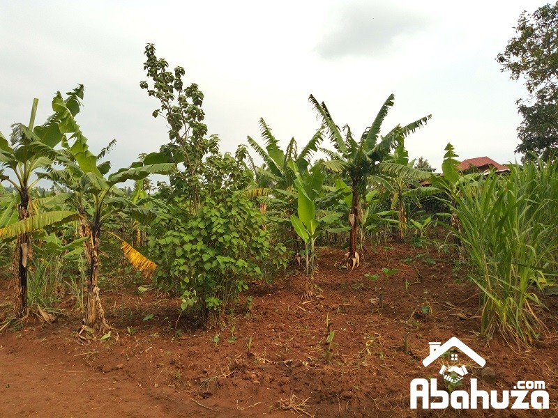 A PLOT ON LOW PRICE FOR SALE IN KIGALI AT GASOGI