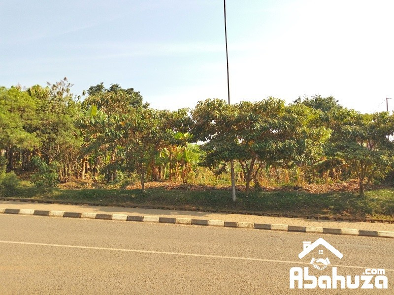 A NICE RESIDENTIAL PLOT ON ASPHART ROAD