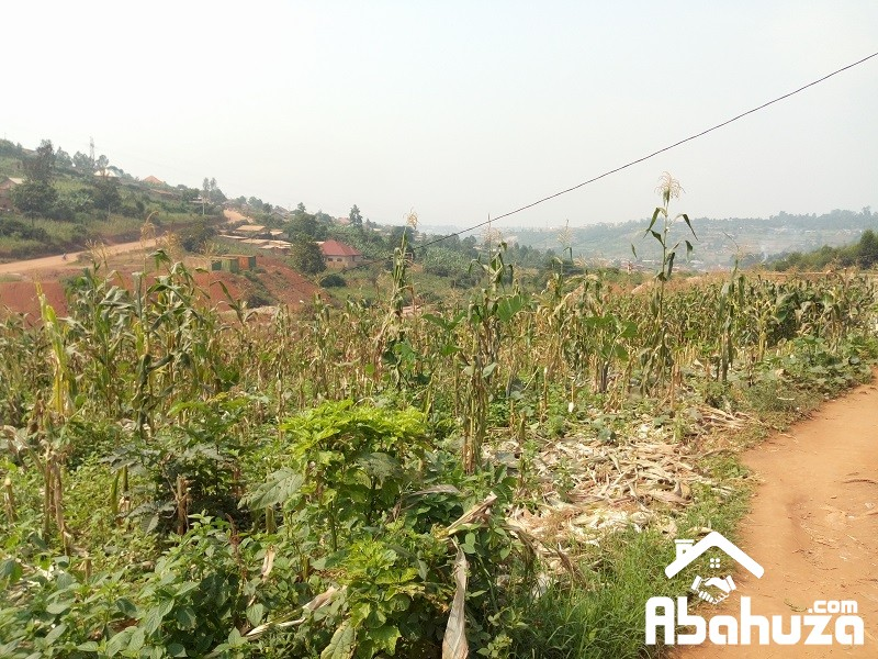 A BIG RESIDENTIAL PLOT FOR SALE AT MASIZI