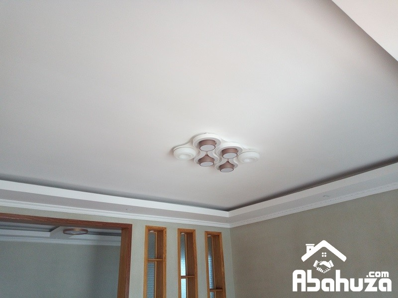 11. Ceiling view