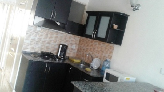 A DECENT ONE BEDROOM APARTMENT FOR RENT IN CITY CENTER