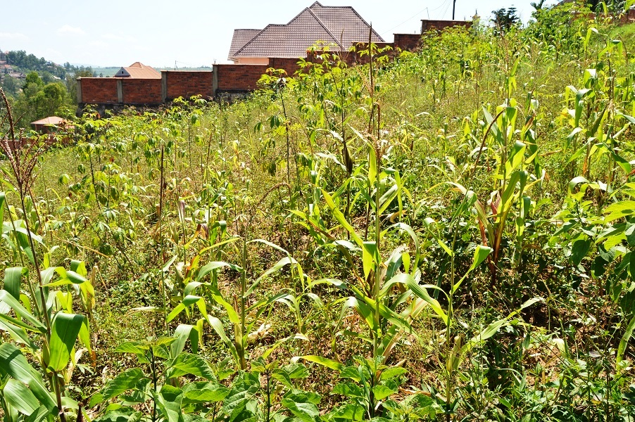 A PLOT FOR SALE AT KIBAGABAGA