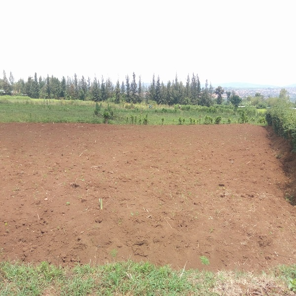 A PLOT FOR SALE AT RUSORORO NEARBY RPF HEAD QUARTER