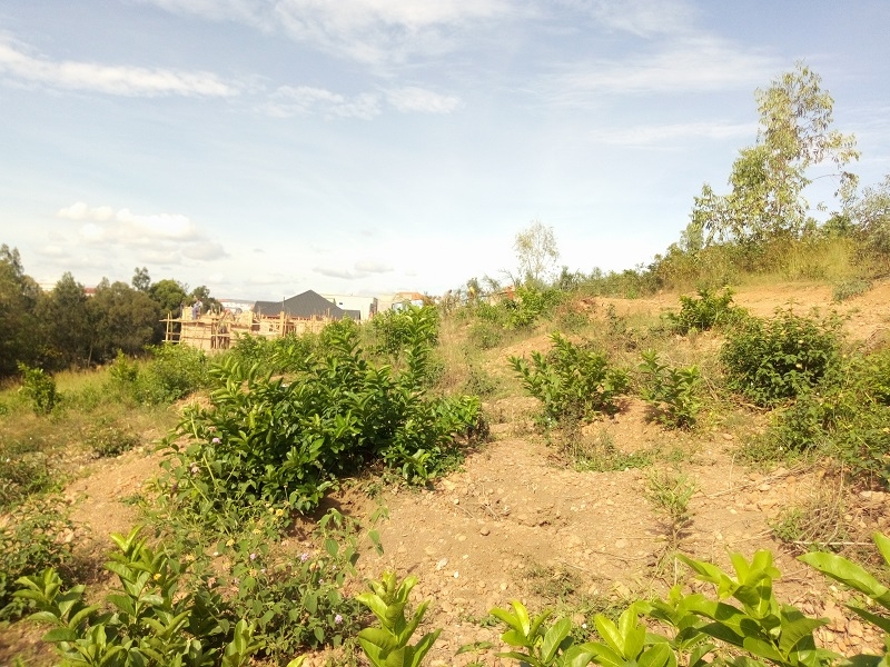 A RESIDENTIAL PLOT FOR SALE AT NYARUGUNGA