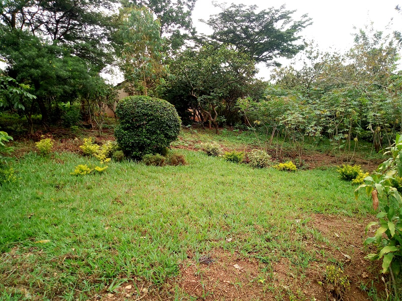 A PLOT FOR SALE AT GACURIRO