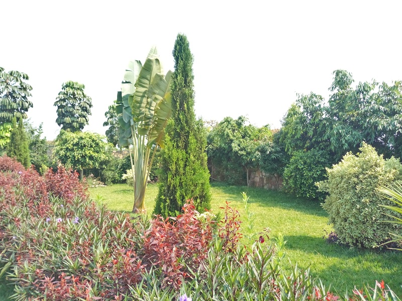 A VERY NICE HOUSE WITH SPACIOUS GARDEN AT BUGESERA
