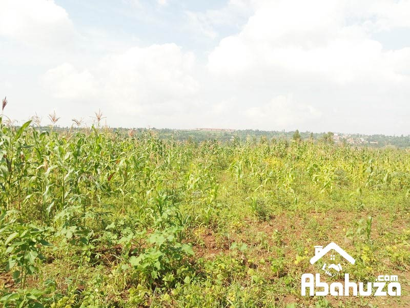 A VERY BIG RESIDENTIAL LAND OF 4 HECTARE FOR SALE