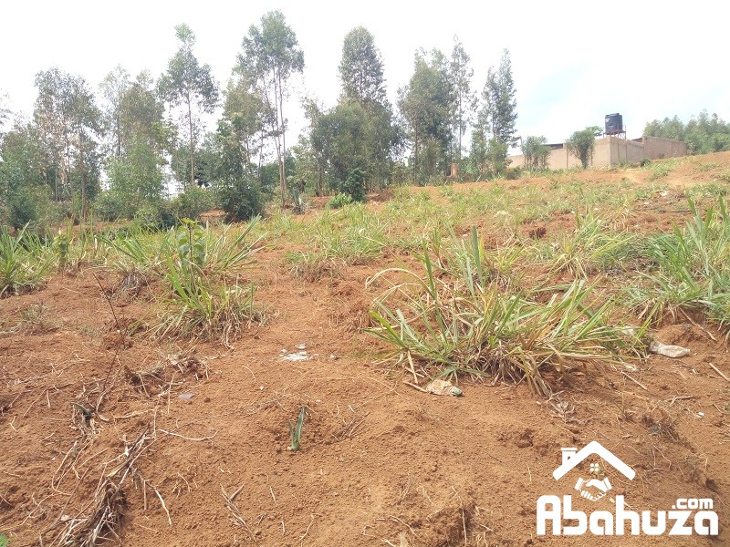 A BIG PLOT FOR SALE AT GAHANGA