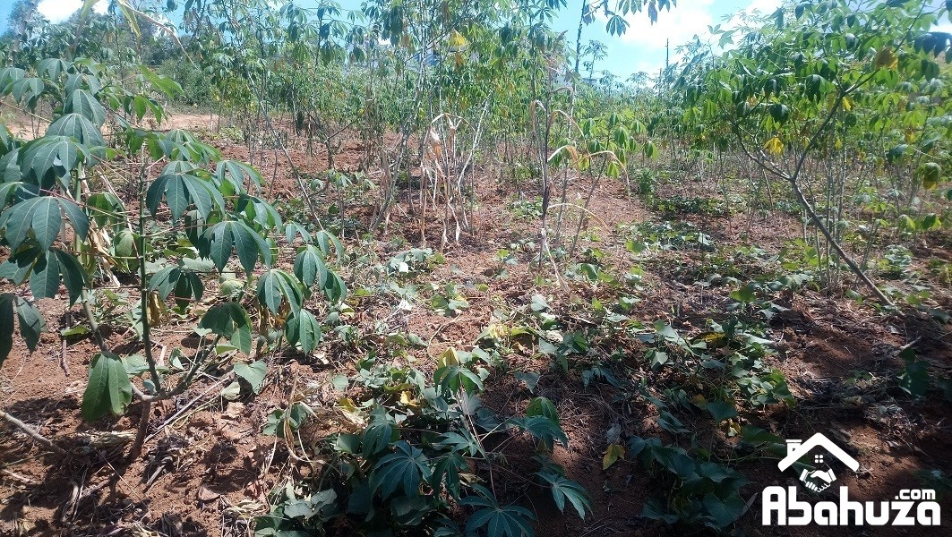 A  PLOT OF 757SQM FOR SALE AT NYANZA KICUKIRO