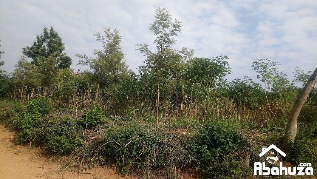 A BIG PLOT 0F 1095 SQM FOR SALE AT GAHANGA