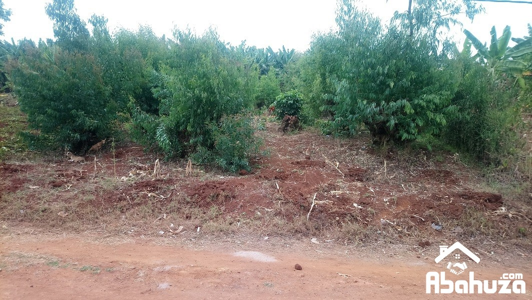 A  RESIDENTIAL PLOT FOR SALE AT KIGALI-KARAMA