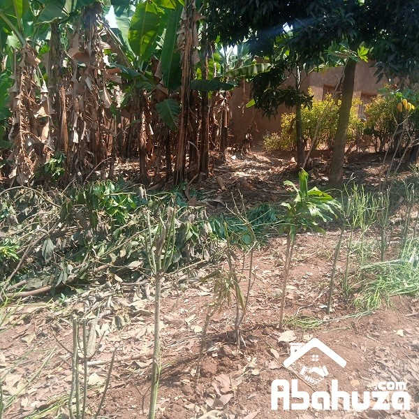 A  RESIDENTIAL PLOT FOR SALE AT Kagarama