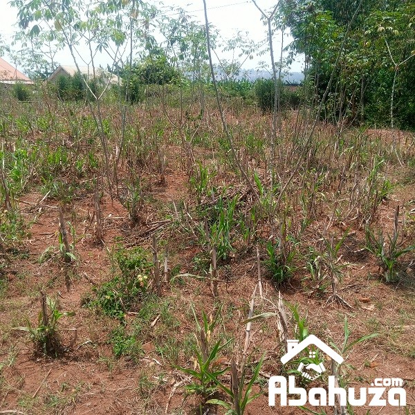A RESIDENTIAL PLOT FOR SALE AT KANOMBE