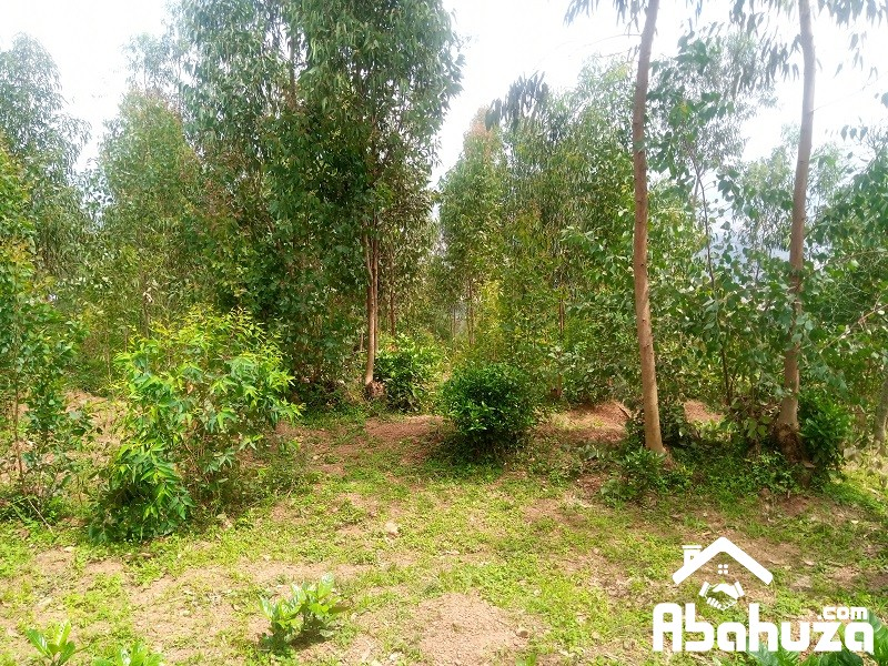 A  PLOT FOR SALE AT KIGALI - Muganza