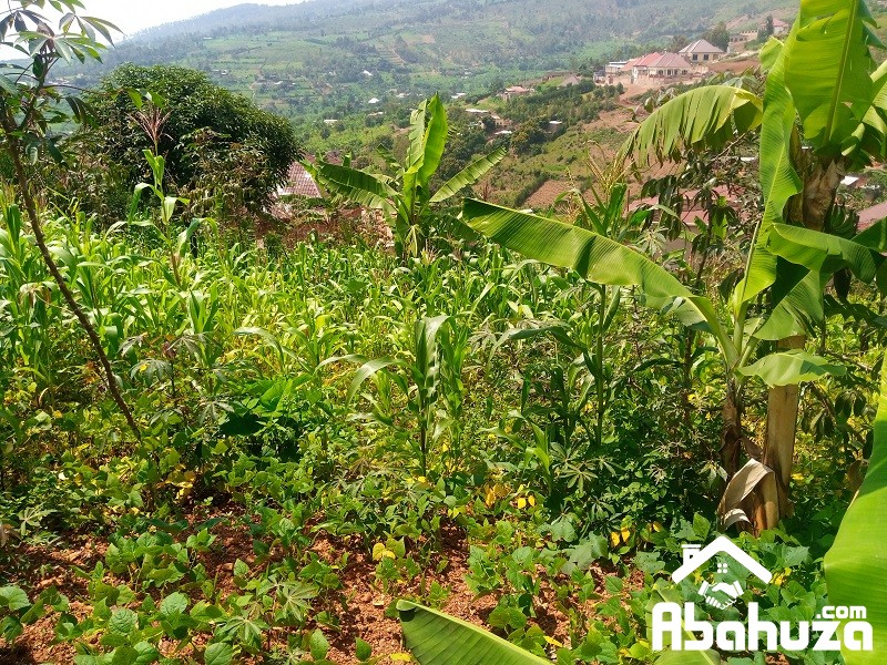 A NICE PLOT FOR SALEIN KIGALI AT REBERO-BISAMBU