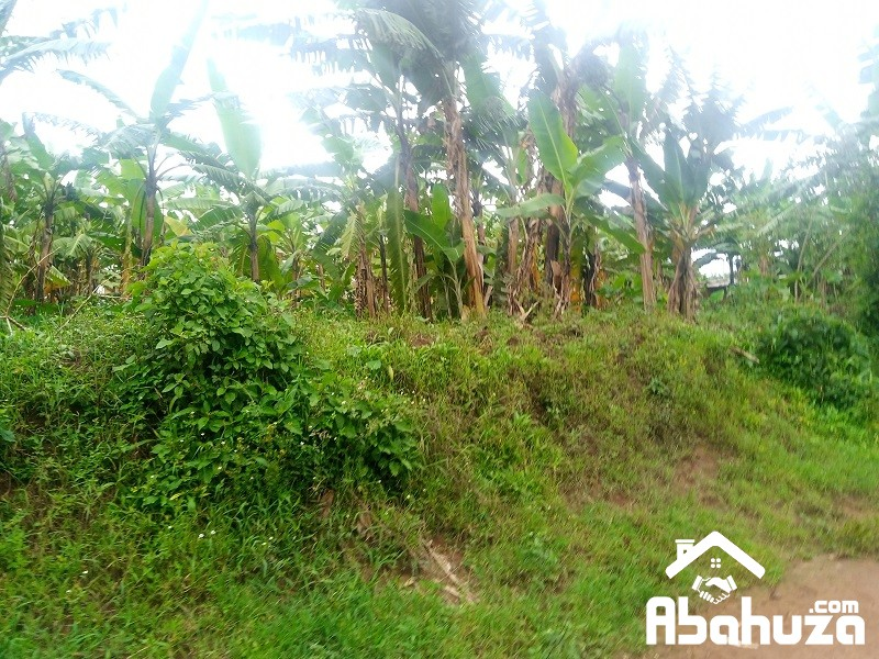 A RESIDENTIAL PLOT FOR SALE IN KIGALI AT BUSANZA