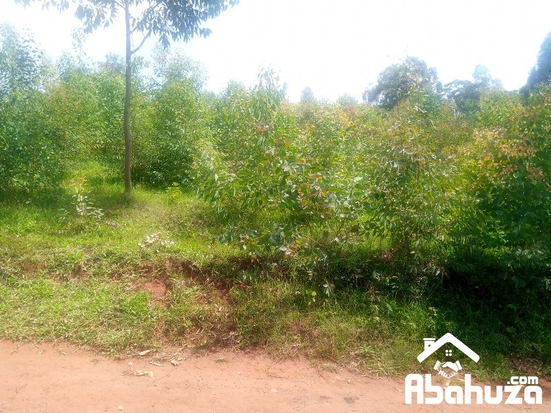 A RESIDENTIAL PLOT FOR SALE IN KIGALI AT KICUKIRO-BISAMBU SITE