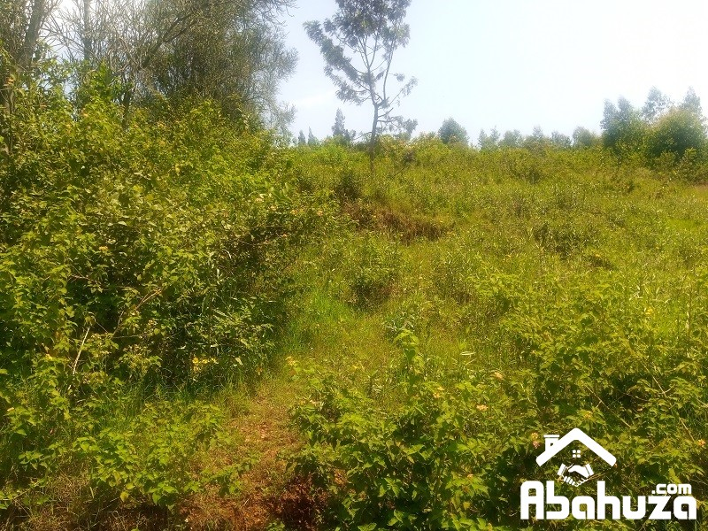 A PLOT FOR SALE WITH CONSTRUCTION PERMIT AT BISAMBU SITE