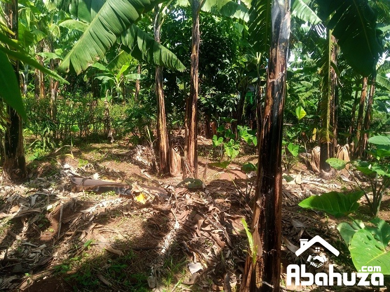 A PLOT FOR SALE WITH CONSTRUCTION PERMIT  IN KIGALI AT KARURUMA