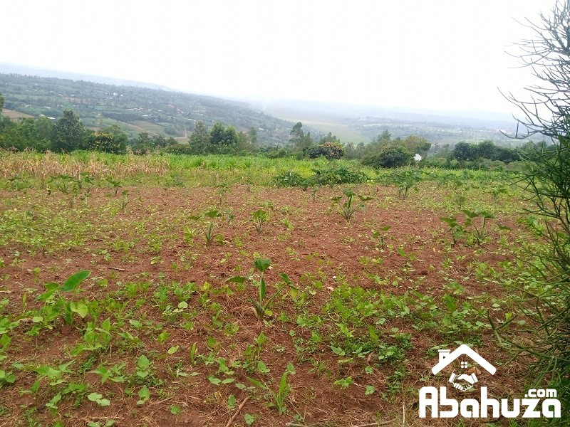 A  BIG RESIDENTIAL PLOT FOR SALE IN KIGALI AT MASAKA