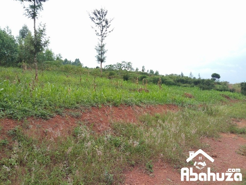A RESIDENTIAL PLOT FOR SALE AT MASAKA