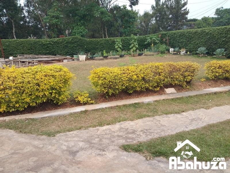 9.Garden